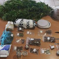 Με τη συμμετοχή της Ασφάλειας Κοζάνης συνελήφθη 35χρονος στη Λαμία, κατηγορούμενος για καλλιέργεια και κατοχή ναρκωτικών και οπλοκατοχή