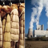 Καστοριά και Κοζάνη «βουλιάζουν» λόγω γούνας και ΔΕΗ – Έλληψη προετοιμασίας μετάβασης σε ένα διαφορετικό οικονομικό μοντέλο