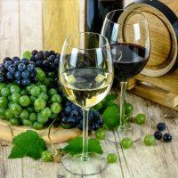 Αυτές είναι οι καλύτερες Ελληνικές ποικιλίες κρασιών