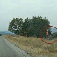 Πόσο επικίνδυνο είναι το κυνήγι αγριογούρουνου με καρτέρι πάνω σε δημόσιο δρόμο; Φωτογραφία από τα Καμβούνια