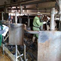 Ευχαριστήριο κτηνοτρόφων της Κοζάνης προς την Κτηνιατρική Υπηρεσία της Π.Ε. Κοζάνης