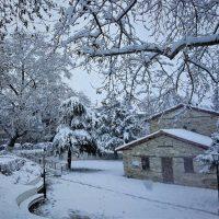 Αιανή Κοζάνης: Η όμορφη πλευρά της επέλασης της «Σοφίας» – Δείτε φωτογραφίες