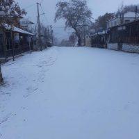 Χιόνισε στα ορεινά της Κοζάνης το πρωί της Πέμπτης – Δείτε φωτογραφίες από την Ζωοδόχο Πηγή