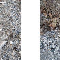 Κομμάτια αμιάντου στη λίμνη Πολυφύτου – Δείτε φωτογραφίες