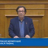 Η ομιλία του Θέμη Μουμουλίδη στην Ολομέλεια της Βουλής επί της τροπολογίας για τον διαχωρισμό των Δήμων Βελβεντού – Σερβίων