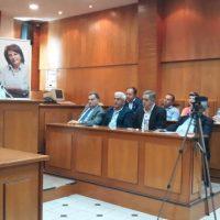 Δεσμεύσεις της Γ. Ζεμπιλιάδου για τις τηλεθερμάνσεις και τις μετεγκαταστάσεις Ακρινής και Αναργύρων – Το πρόγραμμα περιοδειών την Παρασκευή