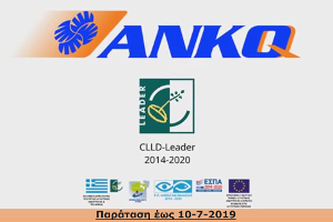 anko-leader-clld.jpg