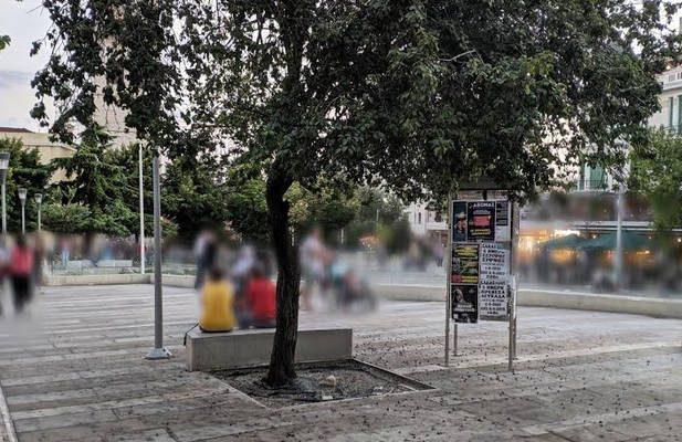 Απορία αναγνώστη του KOZANILIFE.GR για το δέντρο που «στολίζει με τη βρωμιά του» την κεντρική πλατεία Κοζάνης