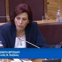Τοποθέτηση της Παρασκευής Βρυζίδου στη Διαρκή Επιτροπή Παραγωγής και Εμπορίου της Βουλής