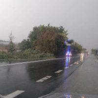 Πτώση δέντρου από τους ισχυρούς ανέμους και την καταιγίδα στην Ε.Ο. Κοζάνης – Λάρισας