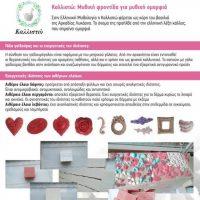Με μεγάλη επιτυχία ολοκληρώθηκε στο ΕΠΑΛ Σερβίων το έργο «Δημιουργία καινοτόμου μαθητικής επιχείρησης με βιολογικά προϊόντα»