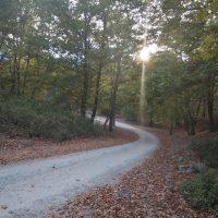 Στη μνήμη του αείμνηστου δάσκαλου και προέδρου της κοινότητας Ρυμνίου Νίκου Αρβανίτη ο Παραλίμνιος Αγώνας Δρόμου Ρυμνίου 5,5 χλμ. και 1 χλμ.