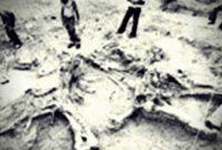 Τα λίθινα εργαλεία ηλικίας 2,5 εκ. χρόνων που βρέθηκαν στην Εορδαία το 1977