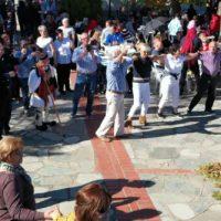 Η Καστανογιορτή 2019 της Δαμασκηνιάς Βοΐου – Δείτε τα βίντεο