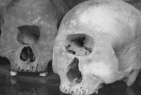 Ο σκελετός Κύκλωπα, που ανακαλύφθηκε στην Κοζάνη το 1931