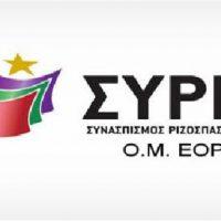 Διαδικτυακή συζήτηση της οργάνωσης μελών ΣΥΡΙΖΑ Εορδαίας με θεσμικούς, εμπορικούς και παραγωγικούς φορείς