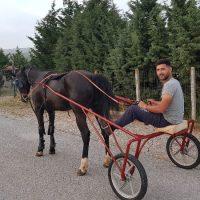 Σιάτιστα: Ένα άλογο, δυο ρόδες και φύγαμε!