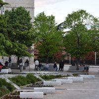 Εργασίες φυτοπροστασίας σε δένδρα στην πόλη της Κοζάνης