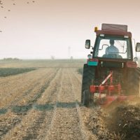 Κοινοβουλευτική παρέμβαση του ΚΚΕ για τα προβλήματα των σιτοπαραγωγών στις Π.Ε. Κοζάνης και Γρεβενών
