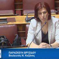 Η ομιλία της Π. Βρυζίδου στη Διαρκή Επιτροπή Κοινωνικών Υποθέσεων της Βουλής