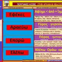 Η προέλευση των ποντιακών λέξεων Εφέκες, Αραεύω, Επορώ, Eλέπω – Της Δέσποινας Μιχαηλίδου Καπλάνογλου