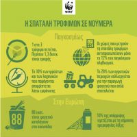 Η WWF για την τεράστια σπατάλη τροφίμων: 88 εκατ. τόνοι τροφής καταλήγουν στα σκουπίδια ετησίως στην ΕΕ – Αδικαιολόγητη αδράνεια από την Ελλάδα
