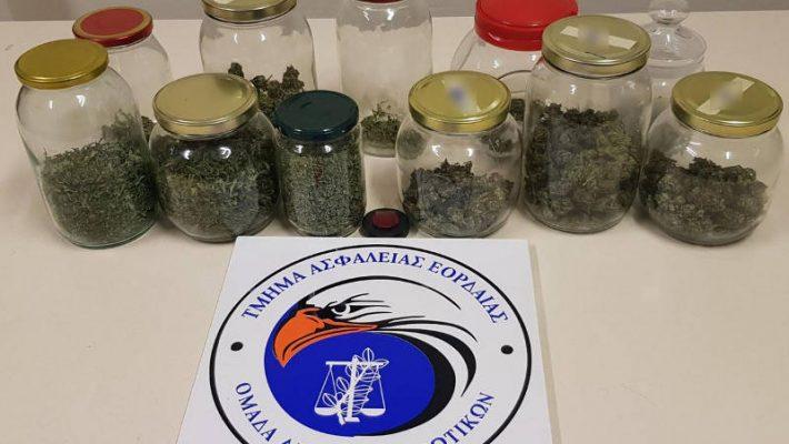Συνελήφθησαν τρία άτομα στην Κοζάνη για ναρκωτικά – Εντοπίστηκαν στο σπίτι του ενός 11 βάζα με ακατέργαστη κάνναβη