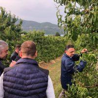 Φωτογραφίες: Από τις δυσκολότερες χρονιές για τη γεωργία στη Δυτική Μακεδονία: Ότι έμεινε από τις παγωνιές του Απριλίου το αποτελείωσαν οι σφοδρές χαλαζοπτώσεις