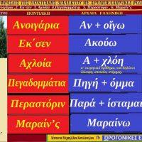 Λέξεις και φράσεις της Ποντιακής διαλέκτου από στίχους τραγουδιών με αρχαιοελληνικές ρίζες – Γράφει η Δέσποινα Μιχαηλίδου Καπλάνογλου