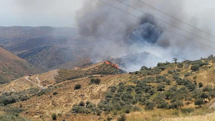 Πυρκαγιά σε εξέλιξη στην Οινόη Κοζάνης –  οχήματα της Πυροσβεστικής στο σημείο