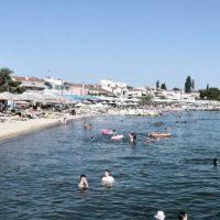 Τοξικές μέδουσες, φυσαλίδες και αφροί «χτυπούν» τη Χαλκιδική – Που οφείλονται τα φαινόμενα