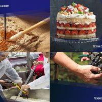 Τέσσερα τμήματα του Δημόσιου ΙΕΚ Κοζάνης στην Εράτυρα – Δείτε τις ειδικότητες